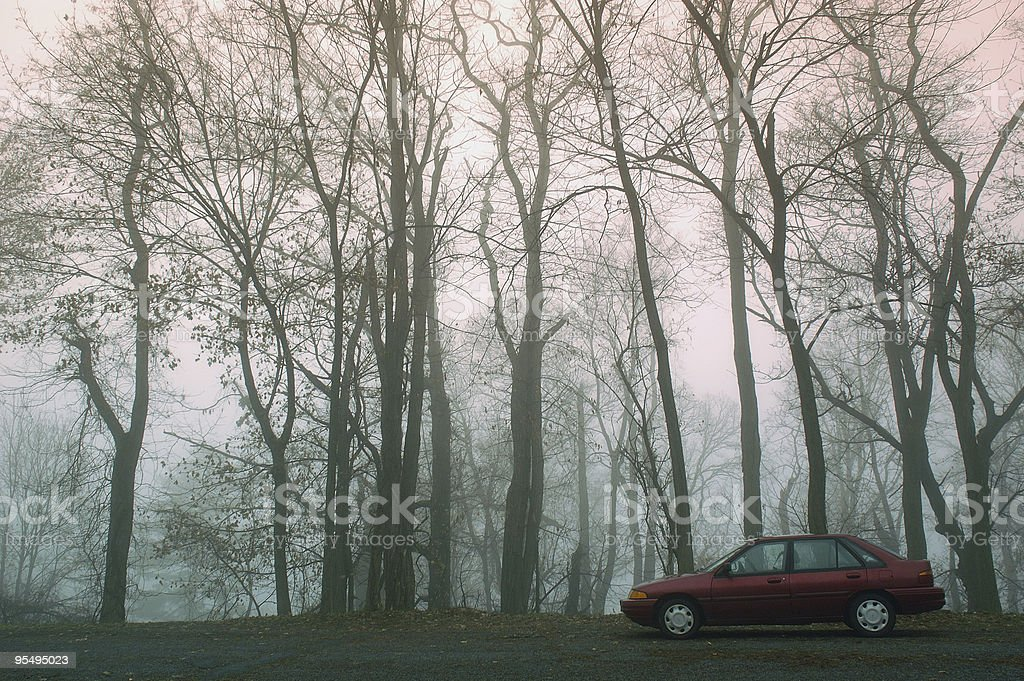 Car in a Foggy Forest royalty-free stock photo