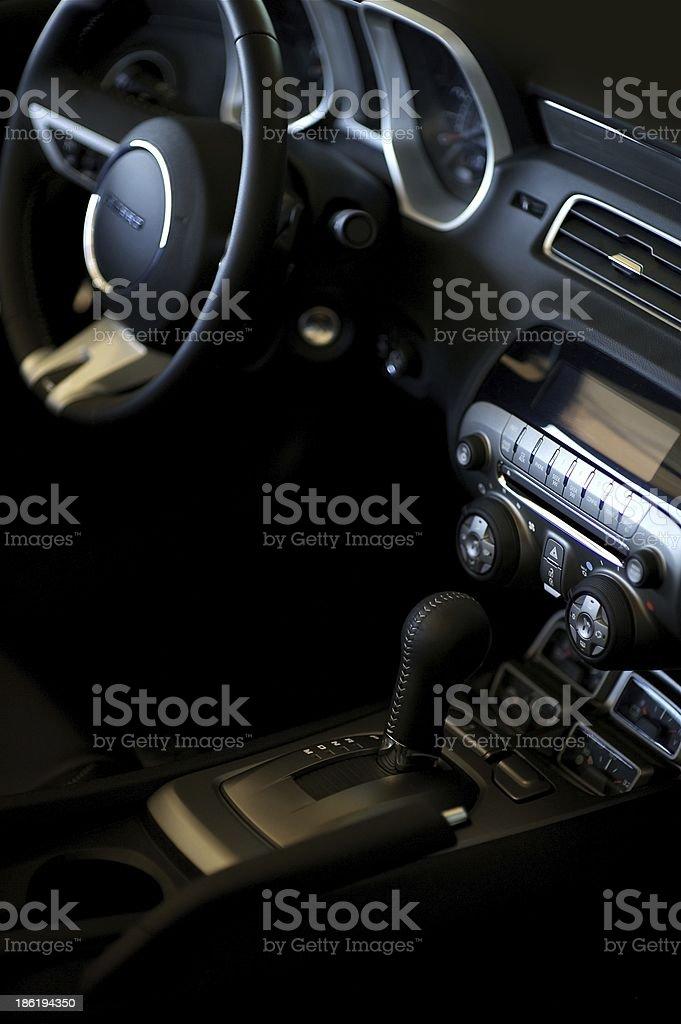 Car Interior Vertical royalty-free stock photo