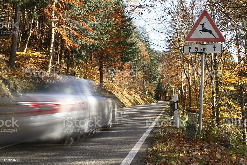 Car is passing sign in the Black Forest royalty-free stock photo
