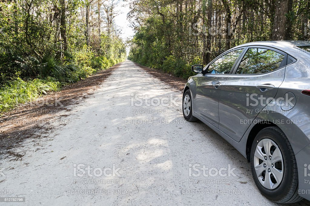 Car on Loop Road in Everglades, Florida stock photo