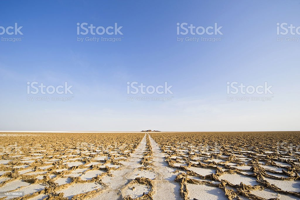 Car tracks into the salt desert,  Danakil, Ethiopia stock photo