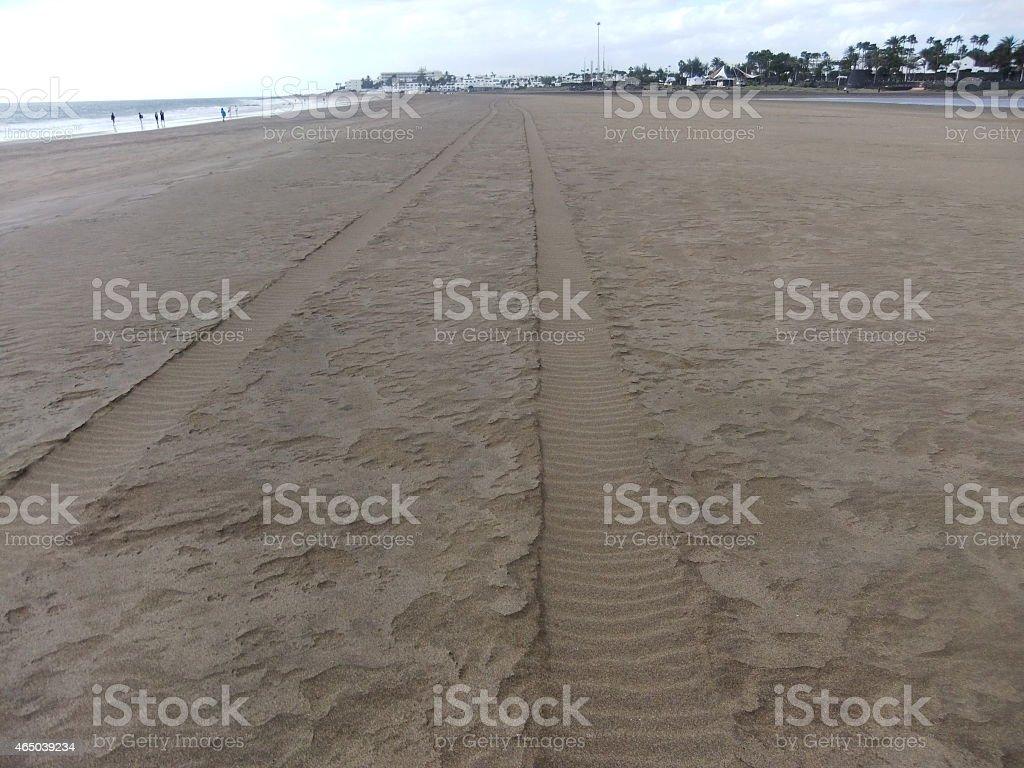 car tracks on beach stock photo