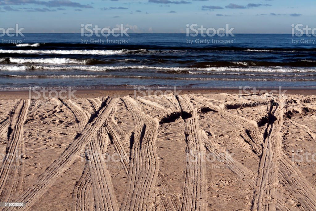 Car tracks on coastal line. stock photo