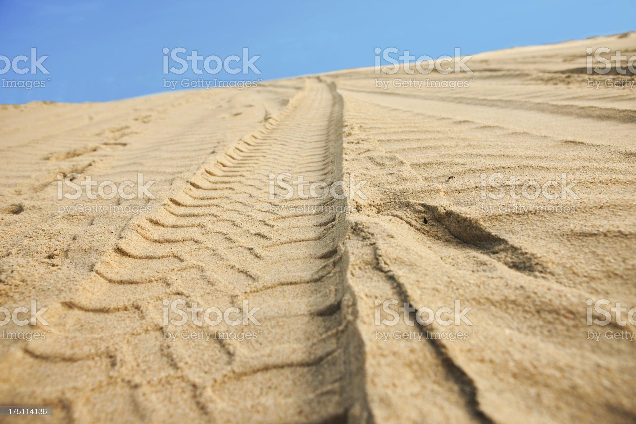 Car tracks on sand royalty-free stock photo