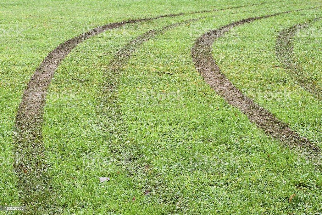 Car tracks royalty-free stock photo