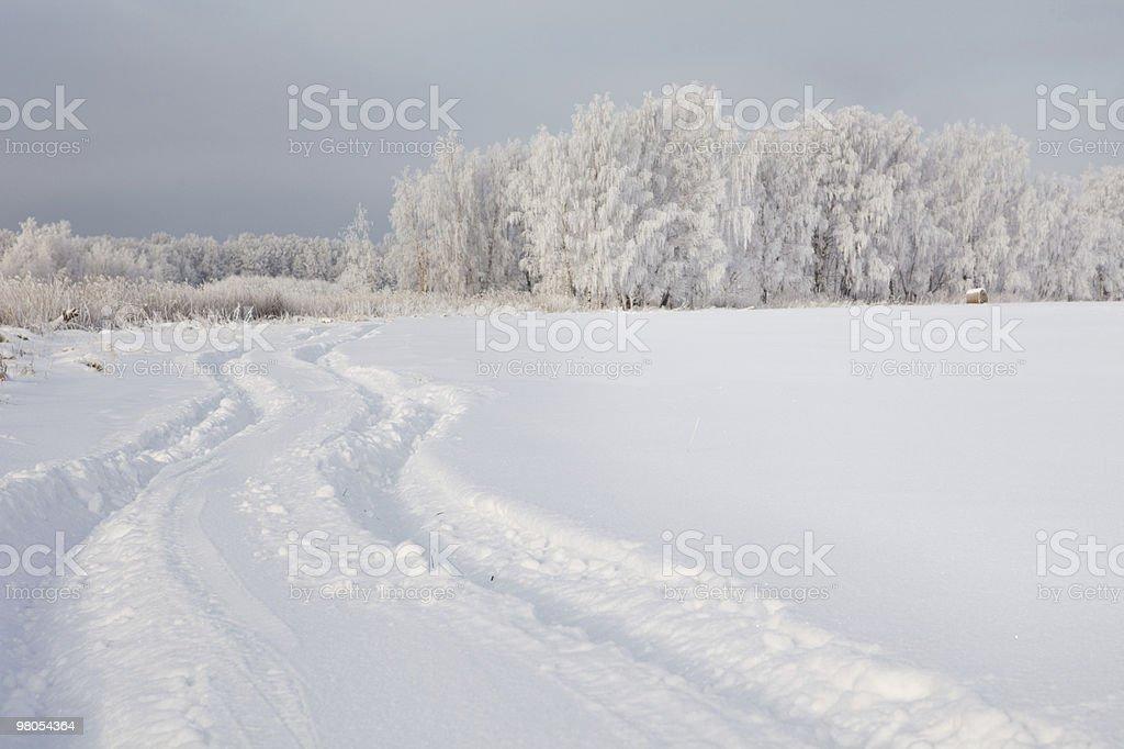 Car trail in fresh deep snow royalty-free stock photo