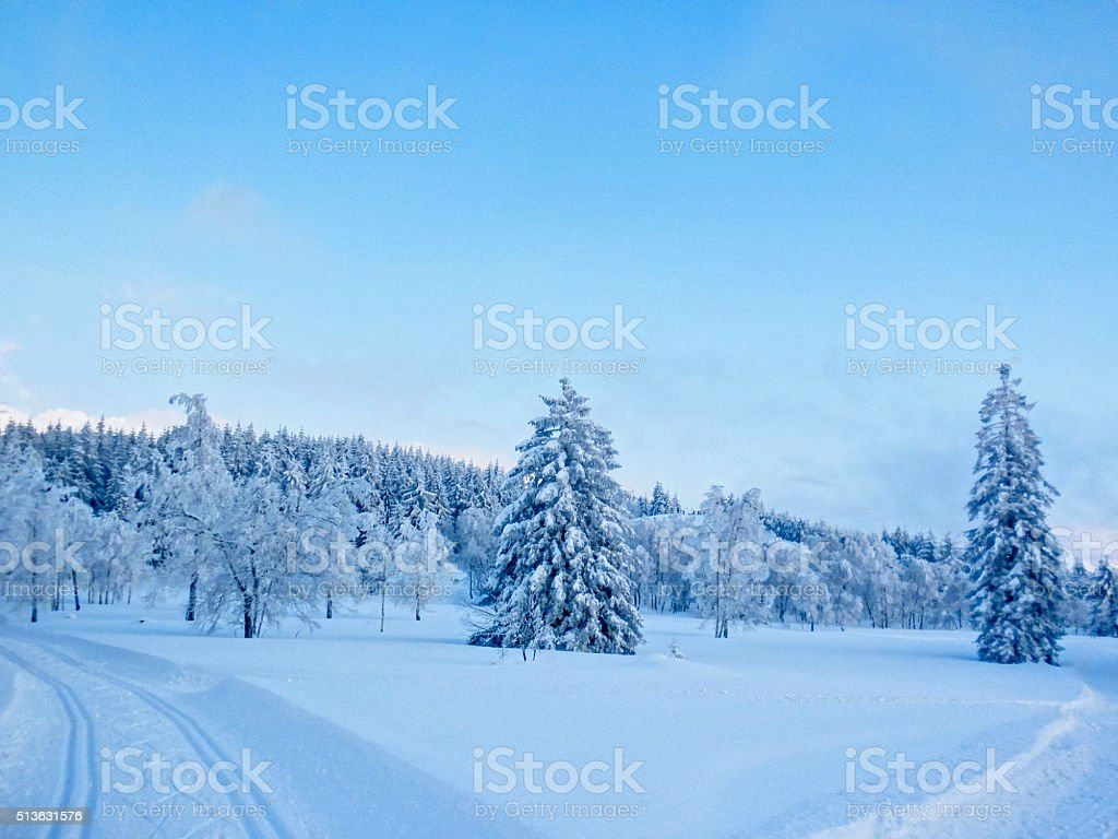 car trails in snow winter evening in the Black Forest stock photo