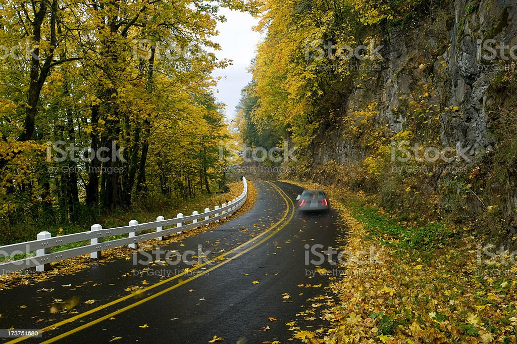 Car traveling on leaf covered road in Autumn royalty-free stock photo