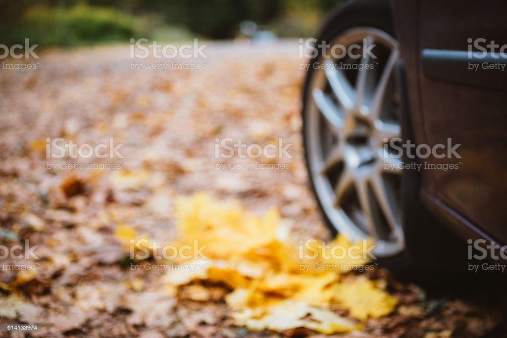 Car wheel closeup against fallen leaves stock photo