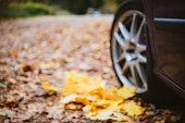 Car wheel closeup against fallen leaves
