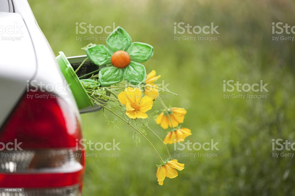 Car with flowers in the tank lid - Renewable energy stock photo