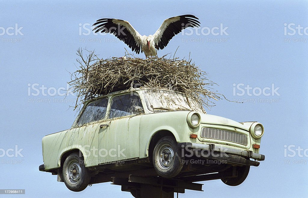 Car with stork stock photo
