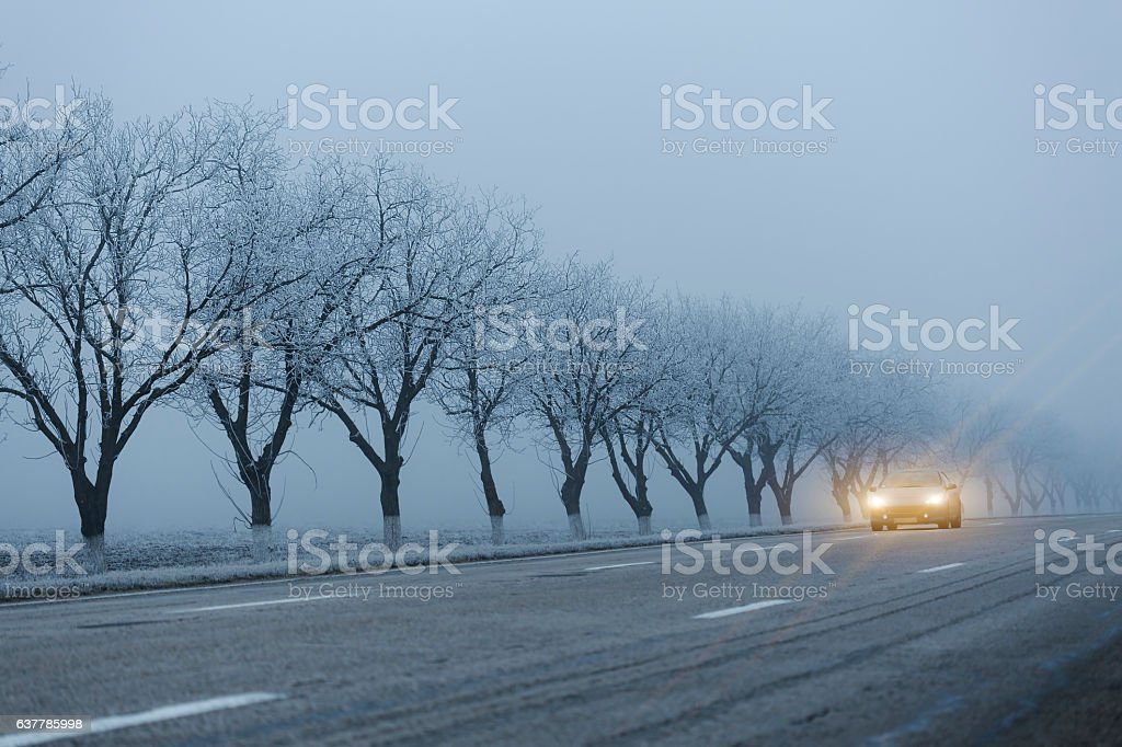 Car with turned on headlights at road on foggy morning stock photo