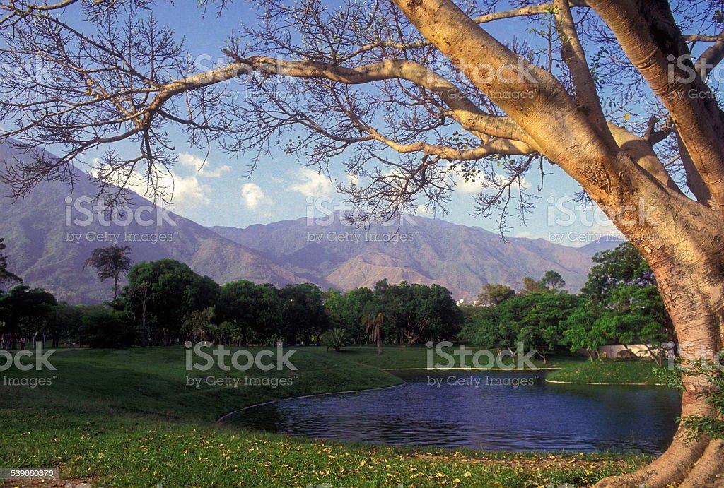 Caracas stock photo