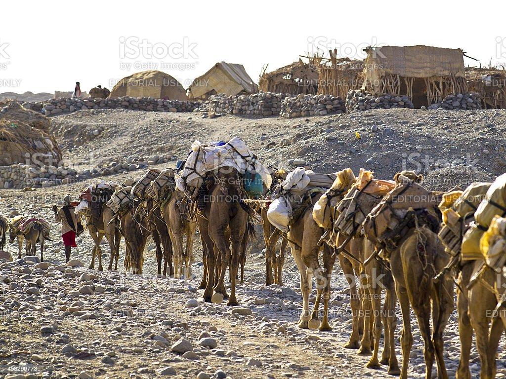 Caravan in Hamed Ela stock photo