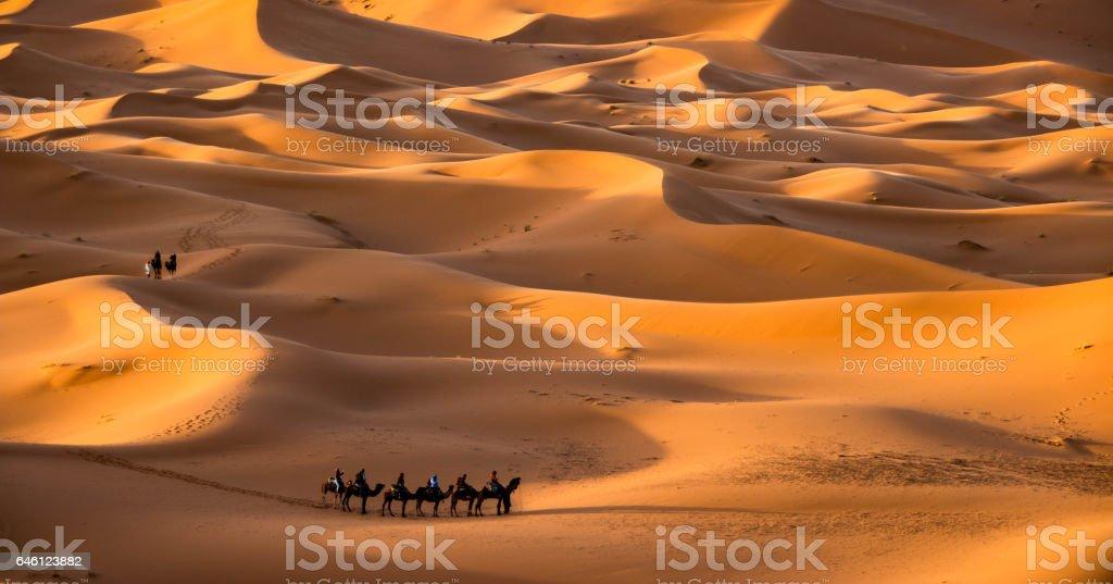 Caravan in Merzouga, Erg Chebbi, Morocco stock photo