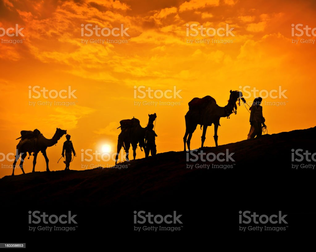 Caravan in the Desert stock photo