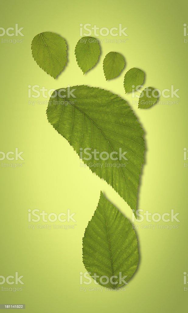 Carbon footprint concept green leaves on gradient background stock photo