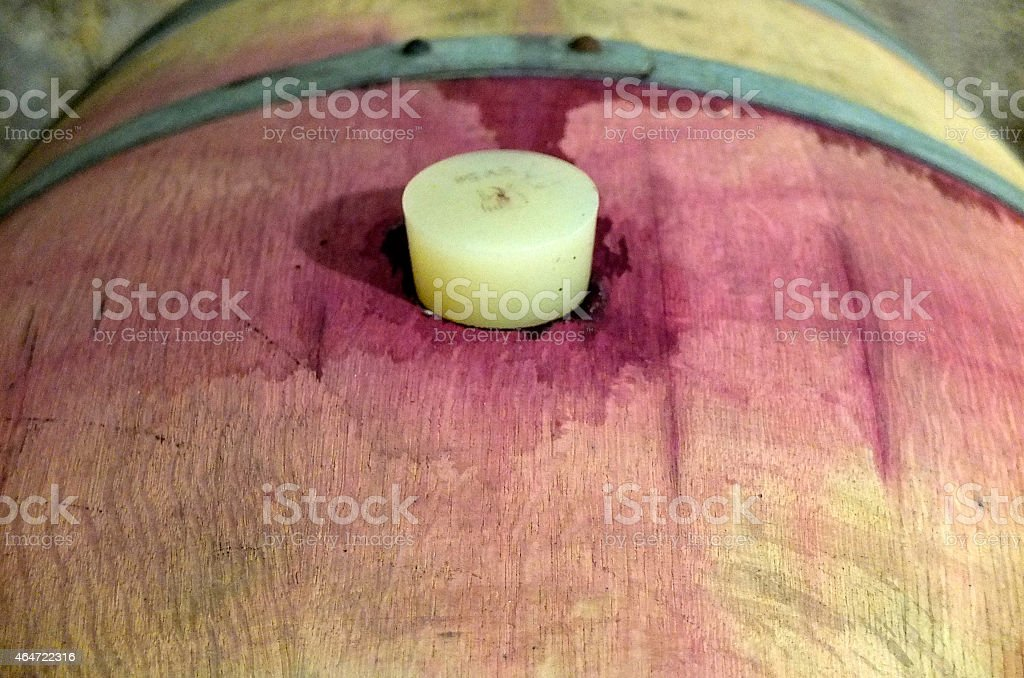 Carboys and wooden barrels filled with wine stock photo