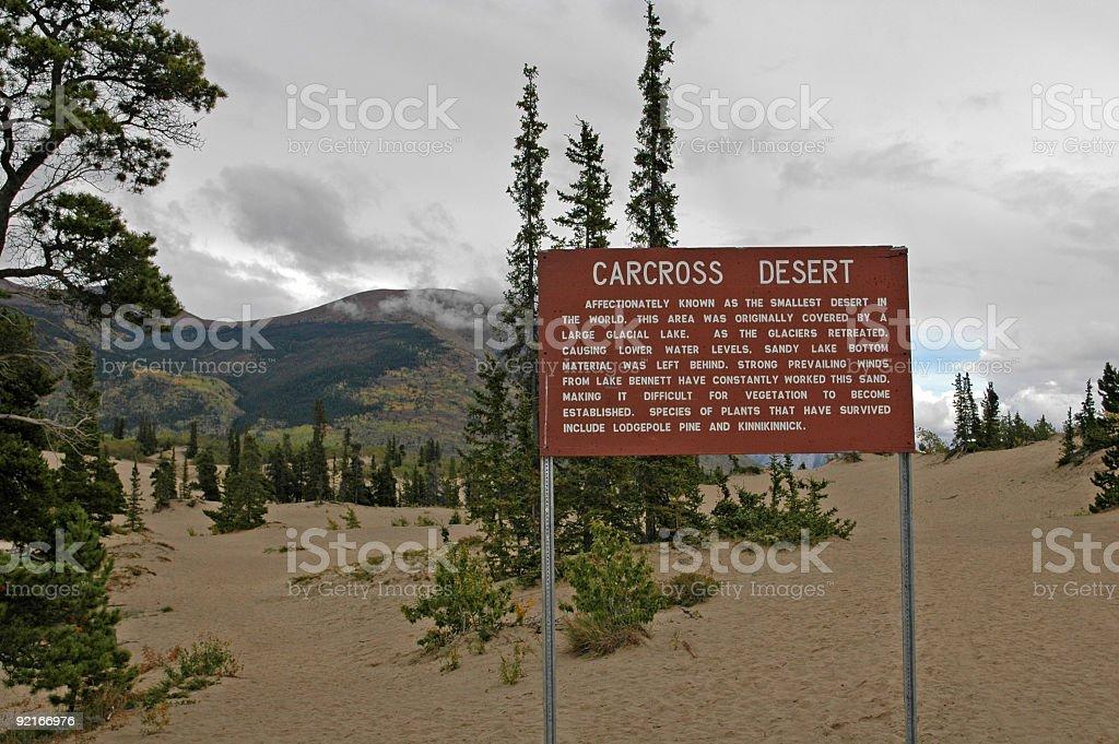 Carcross Desert,Yukon royalty-free stock photo