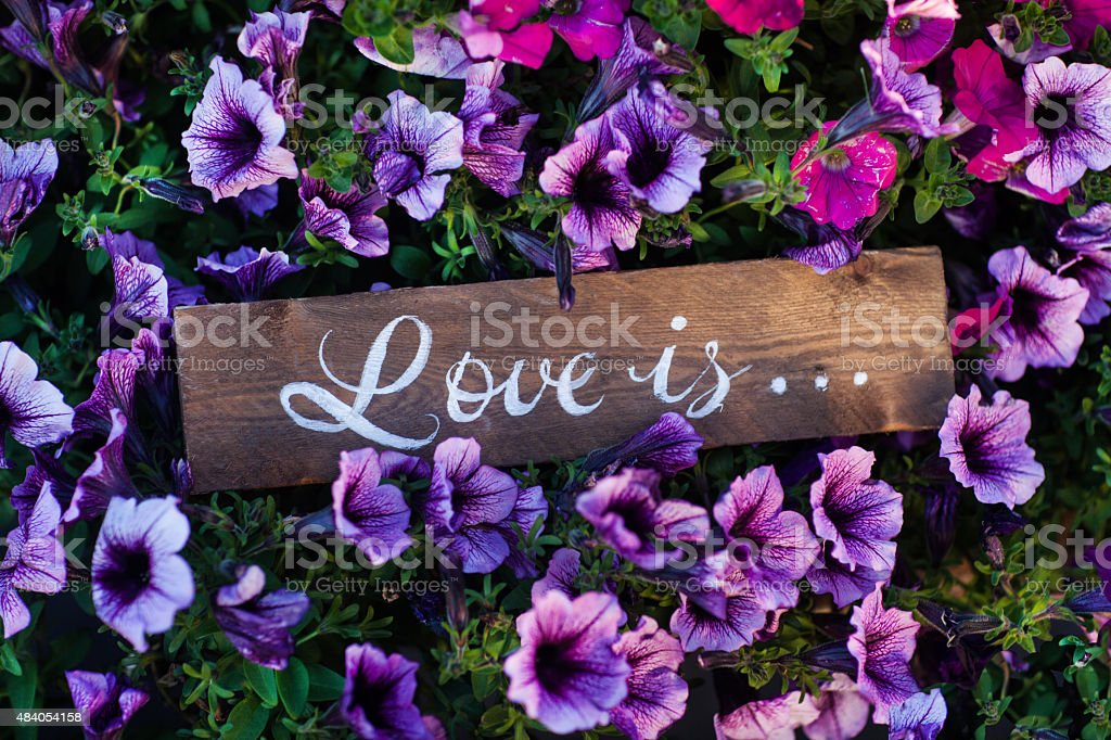 Card with Message 'Love You' handwritten Background image of flowers stock photo