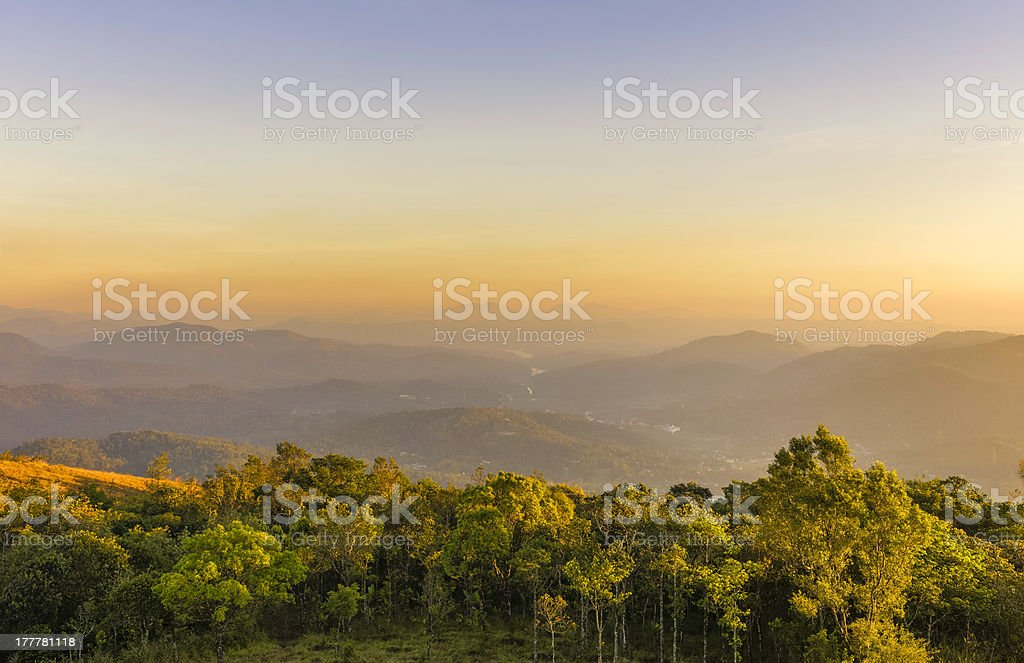 Cardamom Hills and Periyar wildlife sanctuary, Kerala, India. stock photo