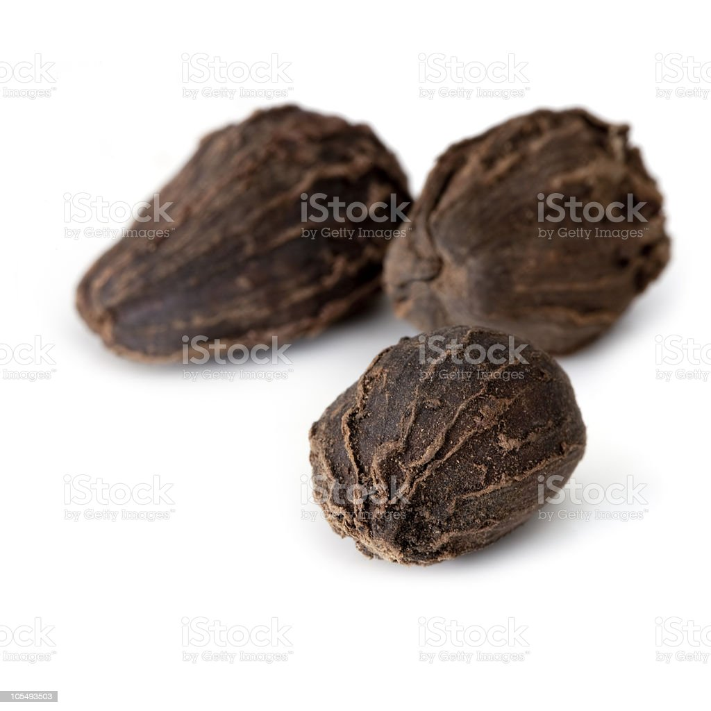 Cardamom stock photo