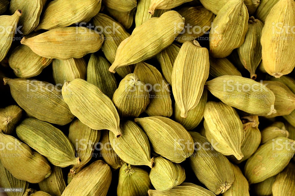 Cardamom Shot in Studio stock photo