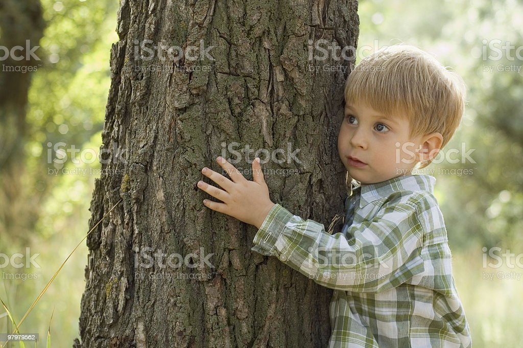 care for nature - little boy embrace a tree royalty-free stock photo
