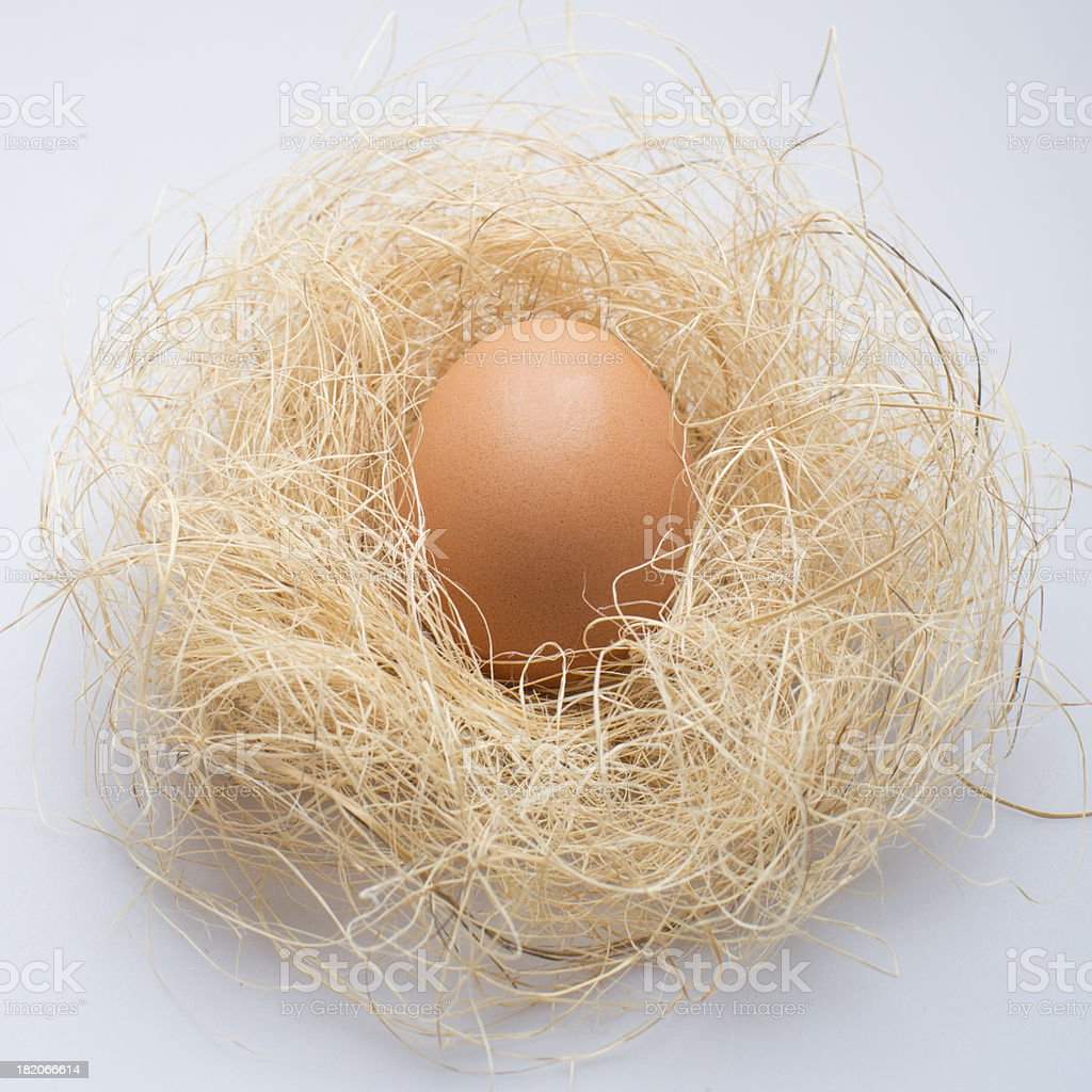 Caree Egg royalty-free stock photo