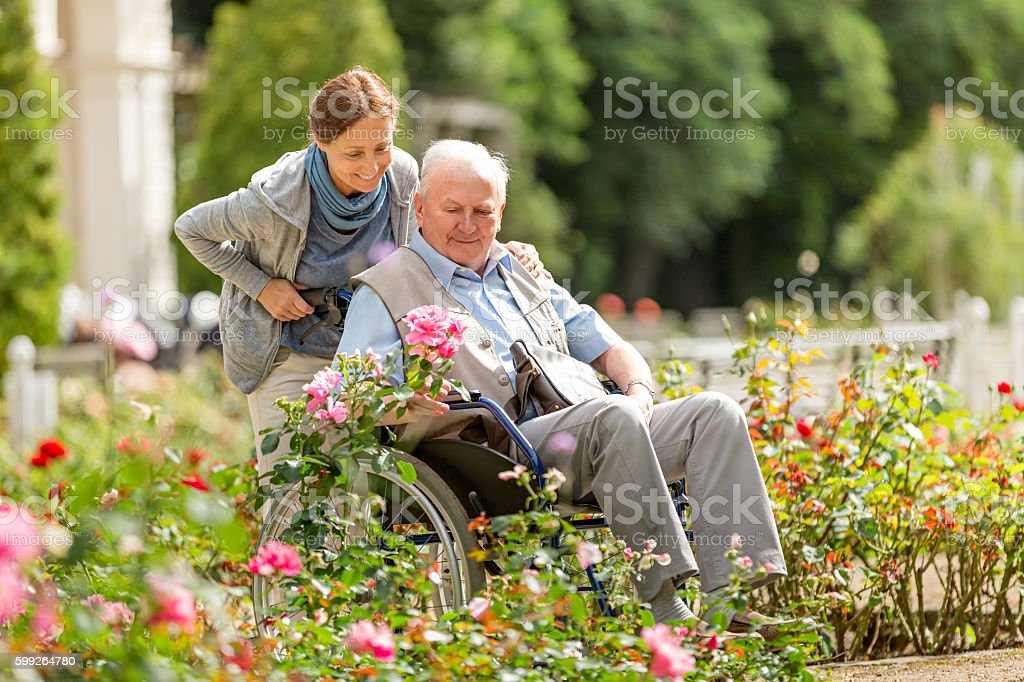 Caregiver and senior man on a wheelchair walking outdoors stock photo