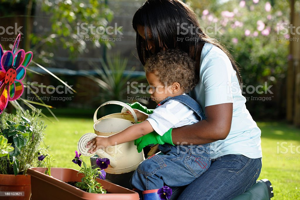 Carer/ Childminder Gardening With Toddler stock photo