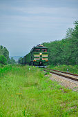 Cargo freight train among the green nature