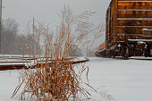 Cargo railroad industry in winter. Railway carriage transport still storage.