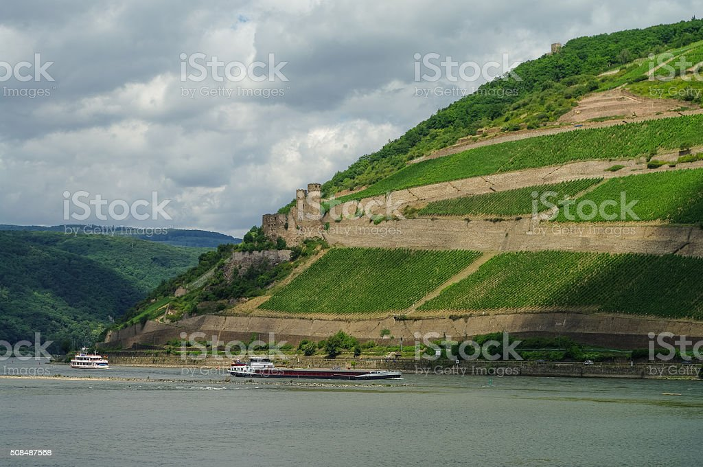 Cargo ship, medieval castle (fortress) Ehrenfels and vineyards o stock photo