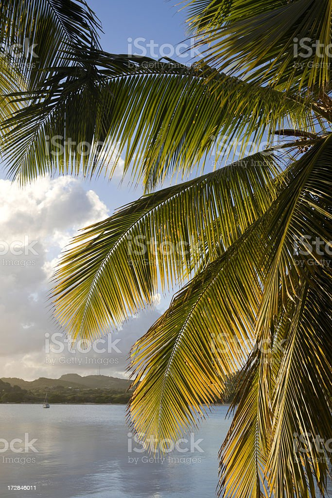 Caribbean Ambiance stock photo