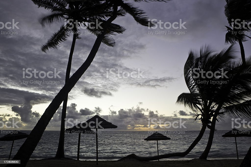 Caribbean Beach at Daybreak stock photo
