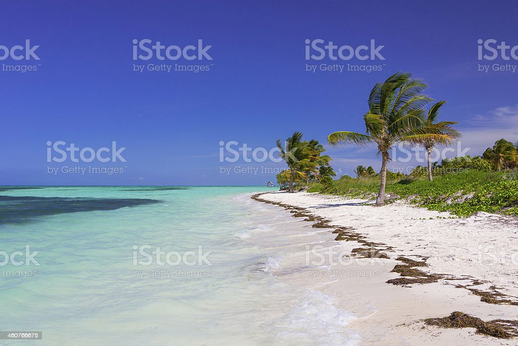 Caribbean beach in Cuba stock photo