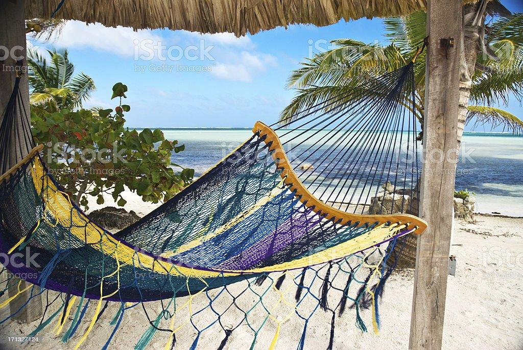 Caribbean Hammock stock photo