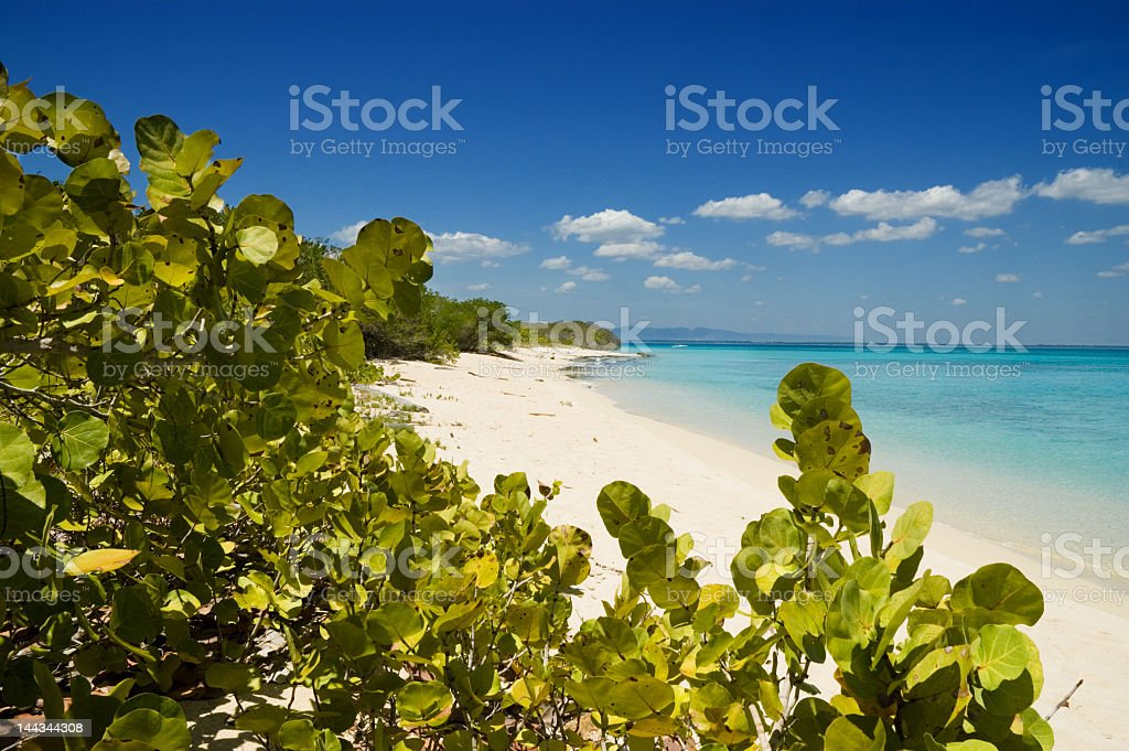 Caribbean island beach stock photo