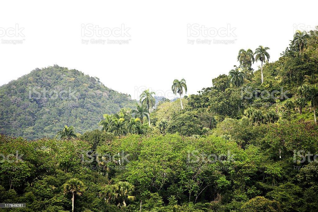 caribbean landscape royalty-free stock photo