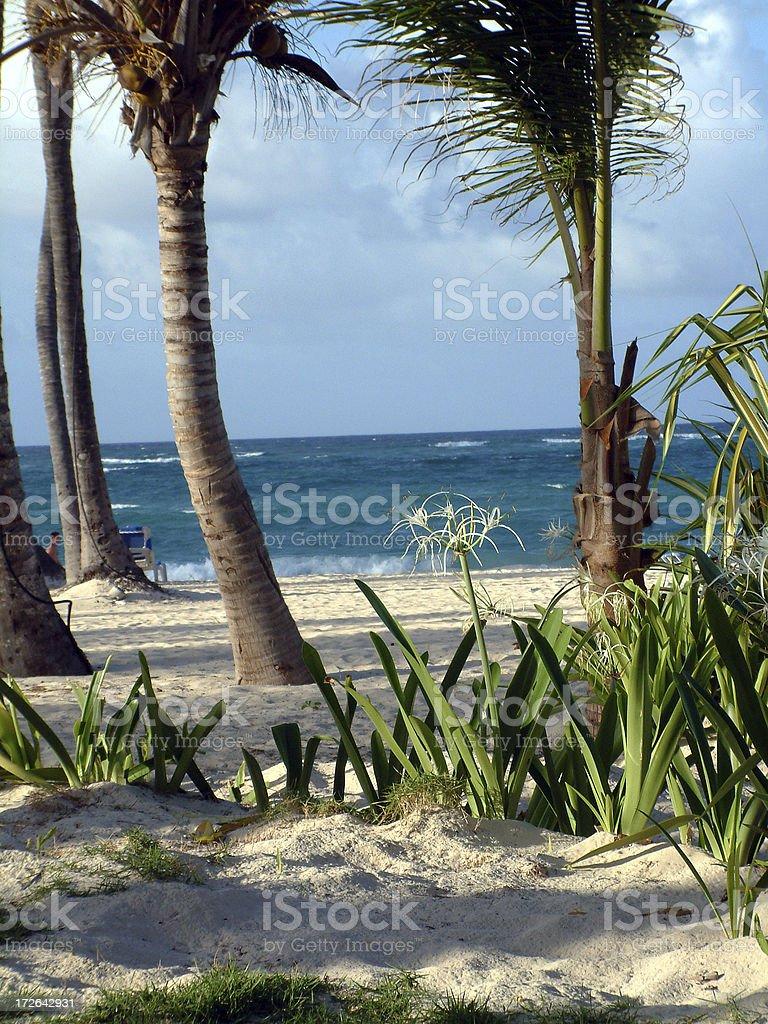 Caribbean Ocean View royalty-free stock photo