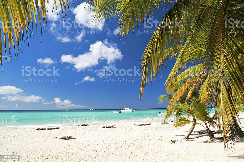 Caribbean paradise stock photo