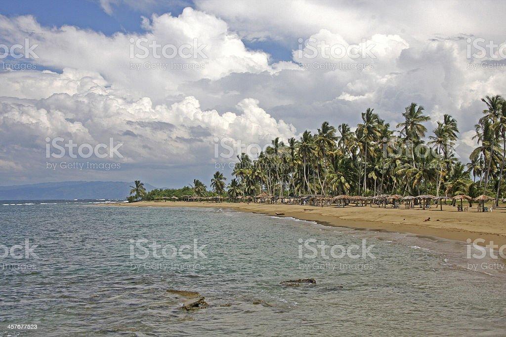caribbean sea and palms, beautiful beach stock photo
