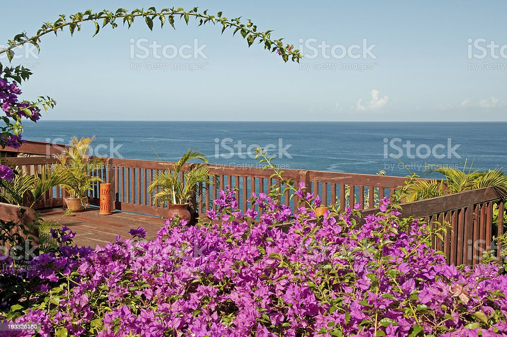 Caribbean Sea view framed by colorful flowers stock photo