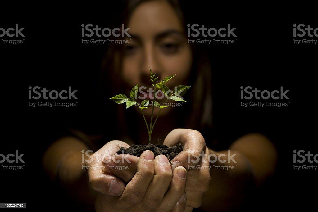 Caring nature royalty-free stock photo