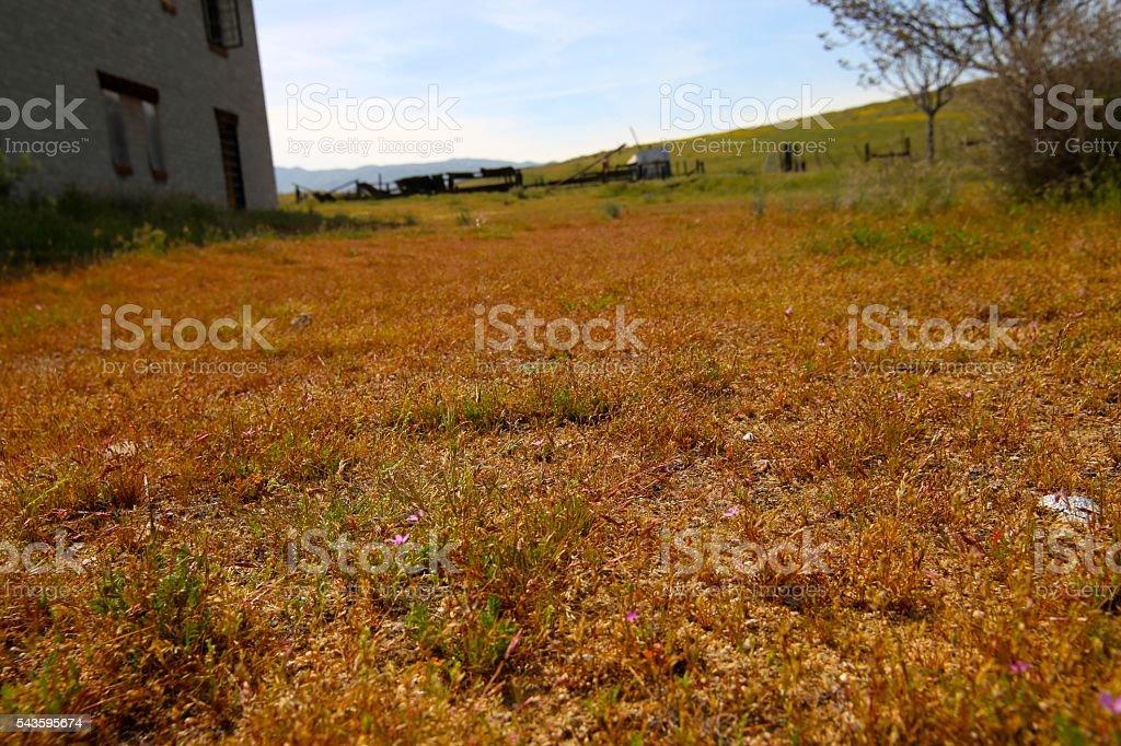 Carizzo Plain Rach Yard stock photo