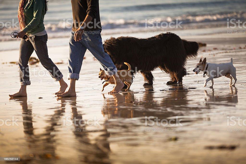 Carmel Beach in Carmel-by-the-Sea royalty-free stock photo