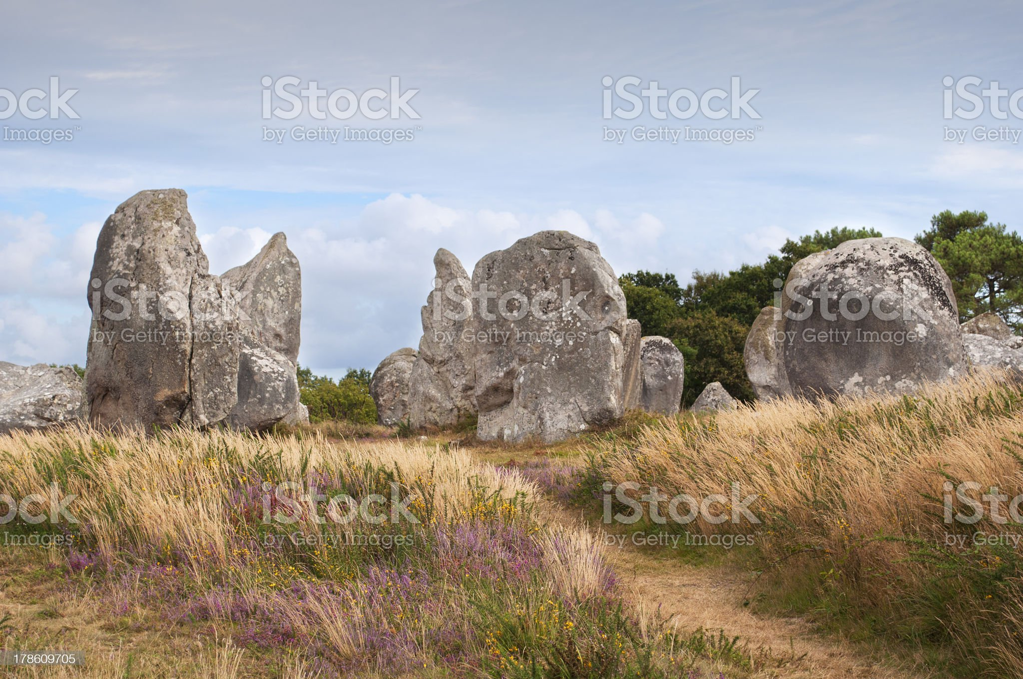 Carnac megalithic stones, Brittany, France royalty-free stock photo