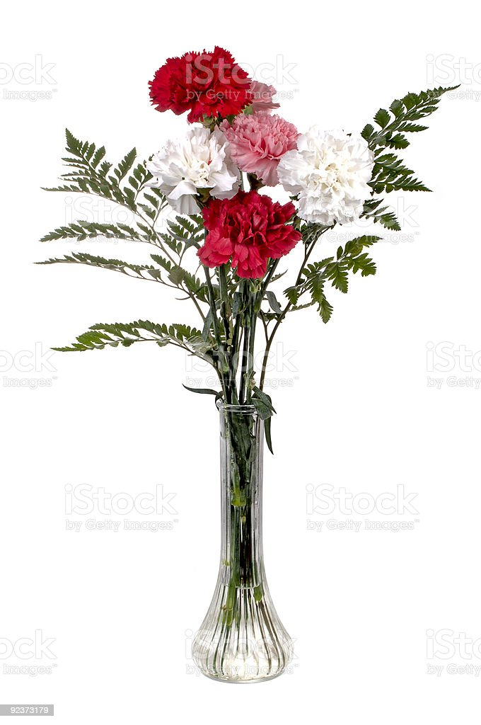 Carnation Bouquet royalty-free stock photo